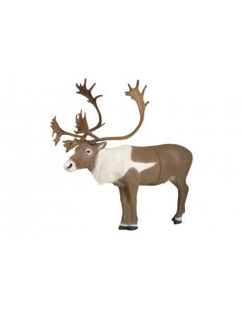 Caribou