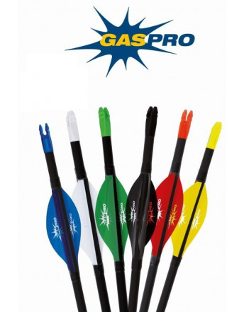 "Gas Pro 2"""