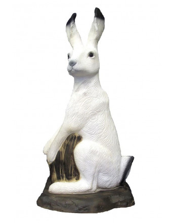 lièvre blanc